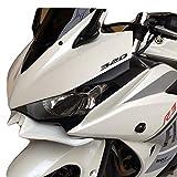 YZF-R3/YZF-R25 MotoGPタイプ ウイングレット v1
