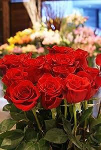 箱買い 一級品のバラ(赤系) 誕生日・記念日・卒業・送別・各種お祝い