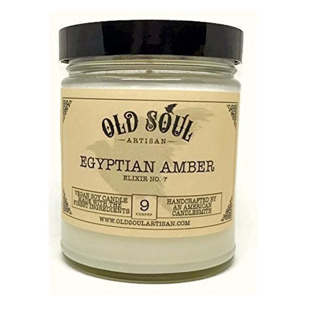 起きて本質的にバンジージャンプEgyptian Amber Scented Vegan Jar Soy Candle - 9 oz [並行輸入品]