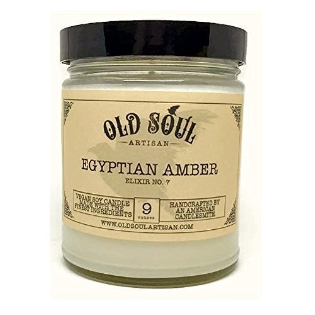 連続的宿痴漢Egyptian Amber Scented Vegan Jar Soy Candle - 9 oz [並行輸入品]
