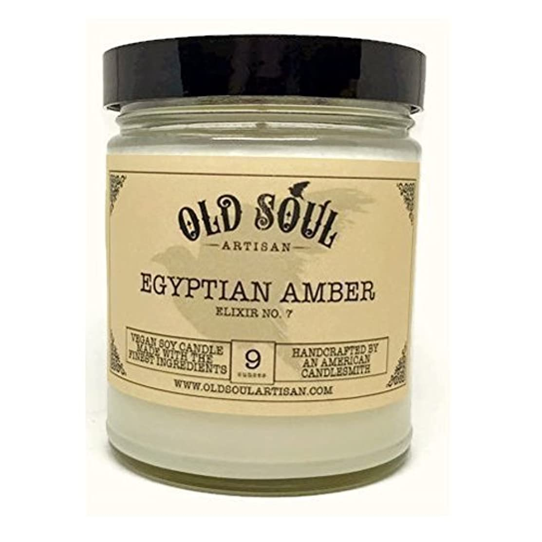 所有者極小暗記するEgyptian Amber Scented Vegan Jar Soy Candle - 9 oz [並行輸入品]