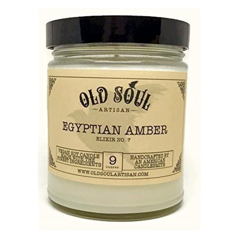 に頼るリズムのヒープEgyptian Amber Scented Vegan Jar Soy Candle - 9 oz [並行輸入品]