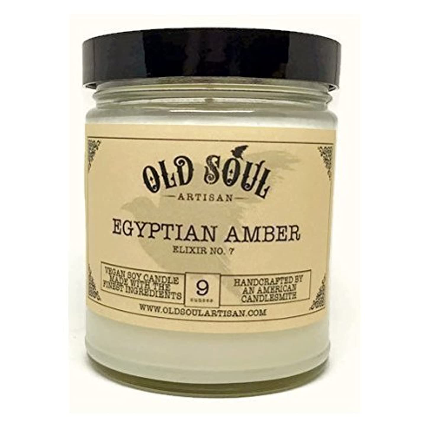 下るマントル古風なEgyptian Amber Scented Vegan Jar Soy Candle - 9 oz [並行輸入品]