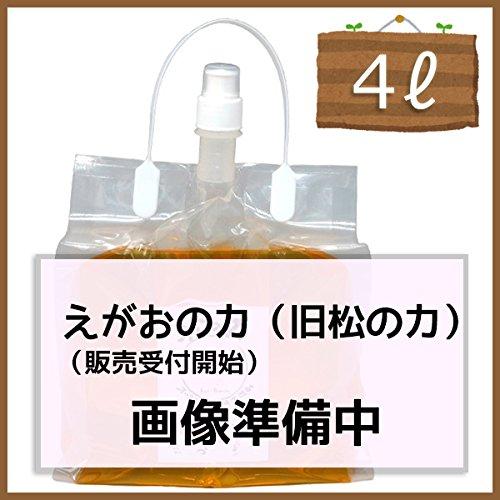 植物油由来成分からできた濃縮無添加洗剤「えがおの力(旧松の力)」4L