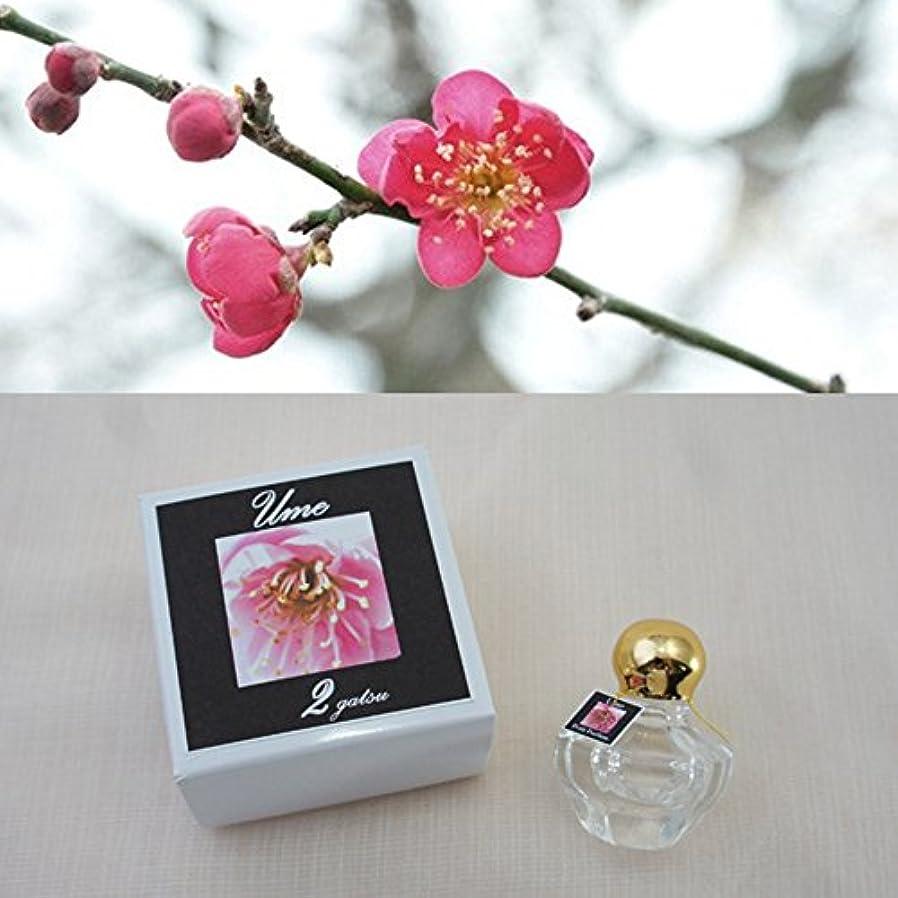 晩餐警報デイジー香運おみくじ&相性図鑑付き「12か月の花香水」 東山植物園の自然の花の香りから生まれた香水です。 (2月 ウメ)