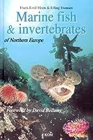 Marine Fish & Invertebrates of Northern Europe by Frank Emil Moen Erling Svensen(2004-06-01)