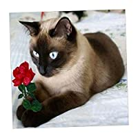 SONONIA 5D DIY ダイヤモンド 刺繍 クロス 貼り付け 装飾的 芸術的 装飾用 顔料付き 多スタイル選べ  - ペルシャ猫