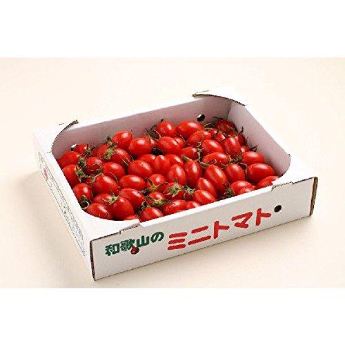 和歌山県産 ミニトマト アイコ (あいこ) 2kg