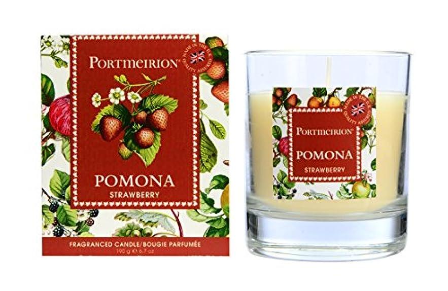 投資するすることになっている水差しPortmeirion BoxedワックスFilledガラス – Strawberry