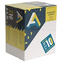 Art Alternatives stretched White Canvas Super Value Pack-8 x 10 inches-Pack of 10 [並行輸入品]