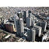 500ピース 新宿高層ビル群-東京 (38x53cm)