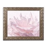 商標Fineアートピンク牡丹花びらIII byコーラNieleゴールド装飾フレーム 16x20 ALI1769-G1620F