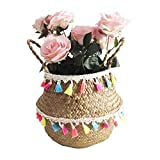 Natural Seagrass Storage Basket - GOODCHANCESG Seagrass Belly Basket With Colorful Tassel Foldable Woven PomPom Basket With Handle for Laundry, Toys or Planters,Nursery Style#11 27x24CM