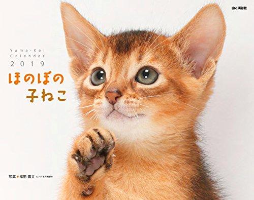 カレンダー2019 ほのぼの子ねこ (ヤマケイカレンダー2019)