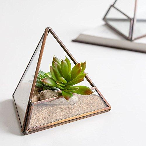 【アジア工房】 ガラスと真鍮でできた三角形のテラリウム(63100) [並行輸入品]