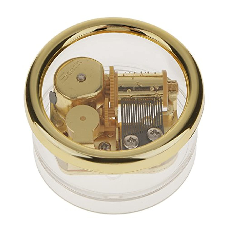 Baoblaze アクリルのオルゴール 透明のオルゴール オルゴール プレゼント 曲 音楽ボックス