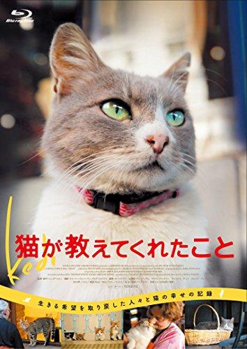 【Amazon.co.jp限定】猫が教えてくれたこと Blu-ray(L盤ビジュアルシート付き)