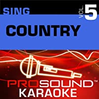 Sing Country Vol. 5 [KARAOKE]