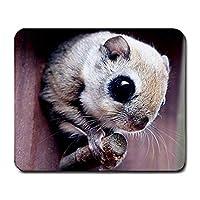 スカイリスマウスパッドファッションMP1075