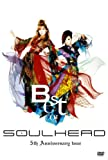 BEST OF SOULHEAD 5th Anniversary tour [DVD] 画像