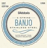D'Addario ダダリオ バンジョー弦 ステンレス Light 5弦 .010-.020 EJS60 【国内正規品】