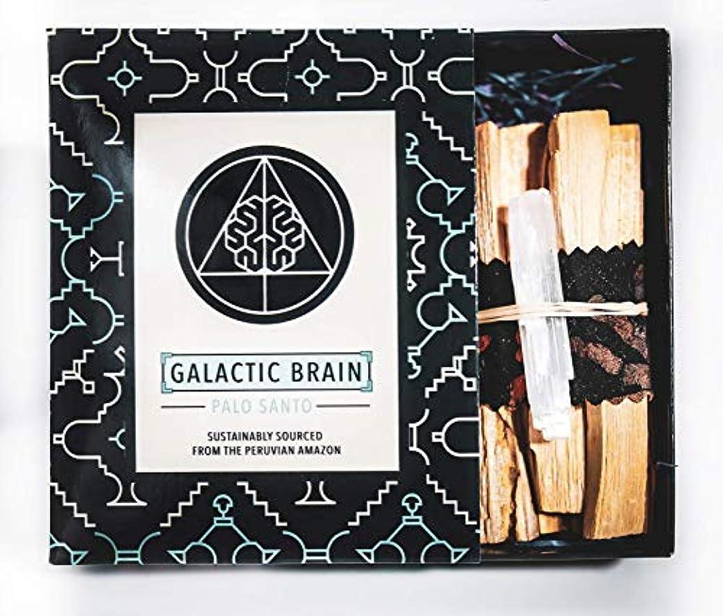 エジプト収益ピンGalacticBrainパロサントスマッジスティックキット ご自宅をきれいにしましょう。 瞑想/ヨガの練習を強化。 自然とつながります。 振動を上げましょう。 ギフトセット入りスマッジスティック 12本 (90g) 4インチ