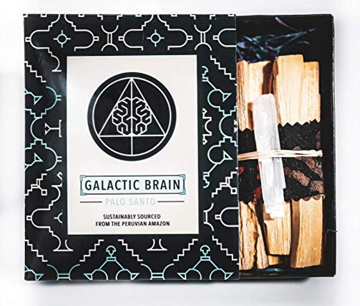 累積アルプスファックスGalacticBrainパロサントスマッジスティックキット ご自宅をきれいにしましょう。 瞑想/ヨガの練習を強化。 自然とつながります。 振動を上げましょう。 ギフトセット入りスマッジスティック 12本 (90g) 4インチ