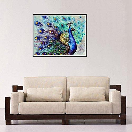 Chinatera Peacock Flaunting Its Tail 5D Diamond DIY Painting Craft Kit Home Decor
