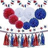 Livder 28ピース 愛国的 ホワイト ブルー レッド シルバー ティッシュペーパー ポンポン メタリック タッセル ガーランド ペーパー フラワー スター バナー リボン キット 7月4日 誕生日 デコレーション