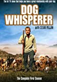 Dog Whisperer With Cesar Millan: Comp First Season [DVD] [Import]
