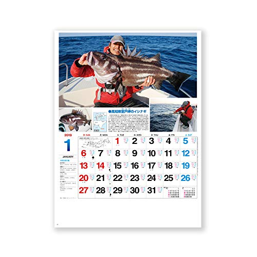 新日本カレンダー 2019年 サンデーフィッシング カレンダー 壁掛け NK99 (2019年 1月始まり)