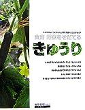 きゅうり―食育 野菜をそだてる (食育野菜をそだてる)