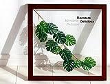 リーフパネル Forest Deco Monstera Deliciosa3(モンステラ デリシオサ)/ 絵画 壁掛け のあゆわら