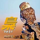 梟 ~ふくろう~ 2021年 カレンダー 壁掛け CL-386