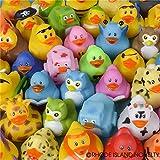50pc 2 Cute Rubber Ducks Bulk Assortment