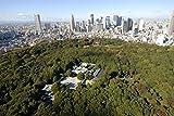 写真とイラストで見る 神社と日本史 (SBビジュアル新書)