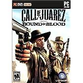 Call of Juarez: Bound in Blood (輸入版)