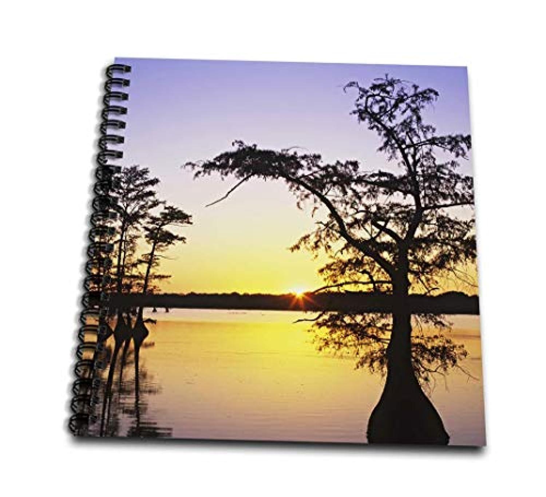 Danita Delimont – 湖 – TN、Reelfoot湖。Cypress Trees on Lake – us43 bja0020 – ジェインズ?ギャラリー – Drawing Book 12x12 memory book db_94334_2
