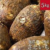 里芋 5kg 無農薬・無化学肥料・千葉県産