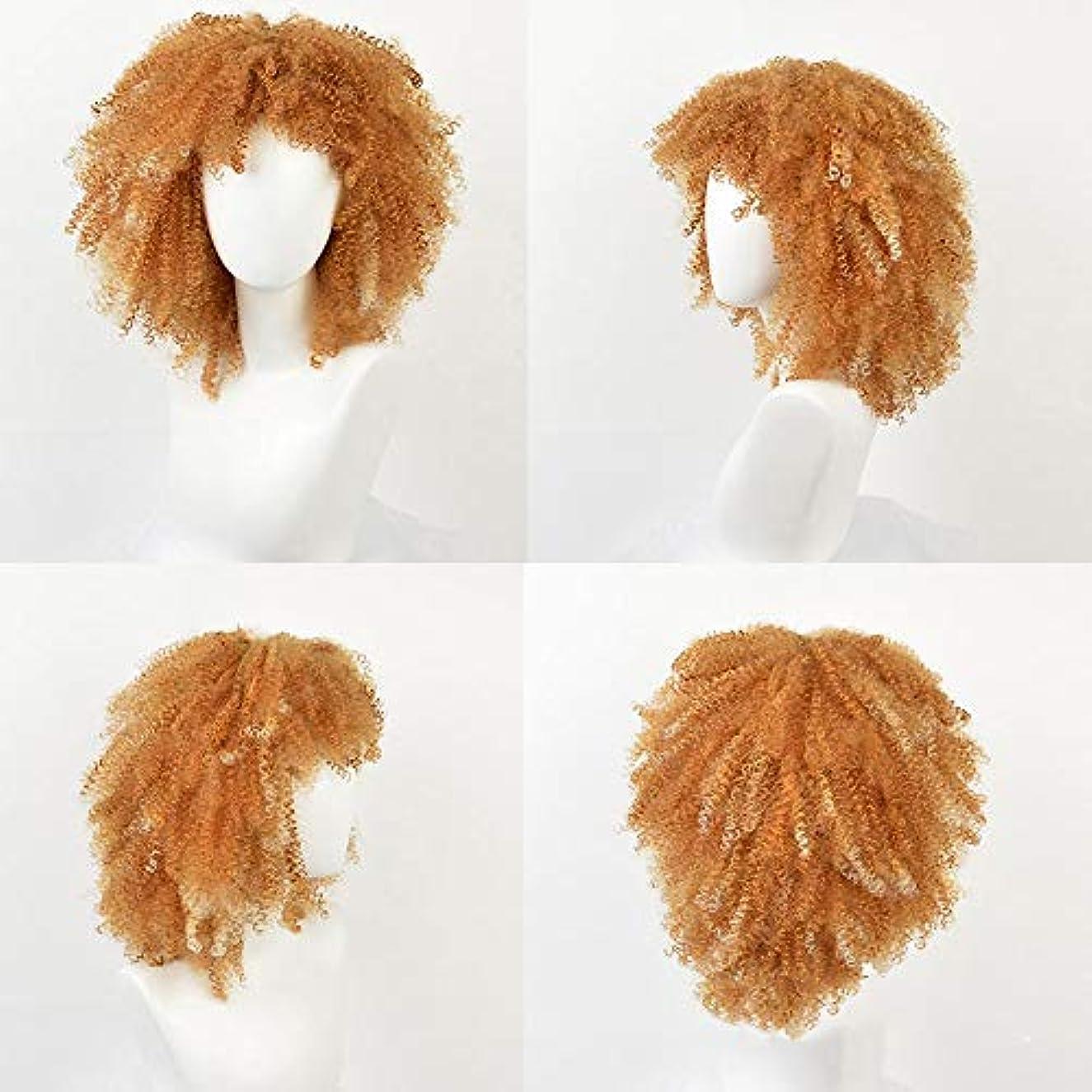 スナック不平を言う浸透するWASAIO スタイル交換用アクセサリー合成繊維縮れ毛カーリーウィッグアフリカ系黒人女性爆発ヘッド14インチ小髪ケミカル (色 : C-3)