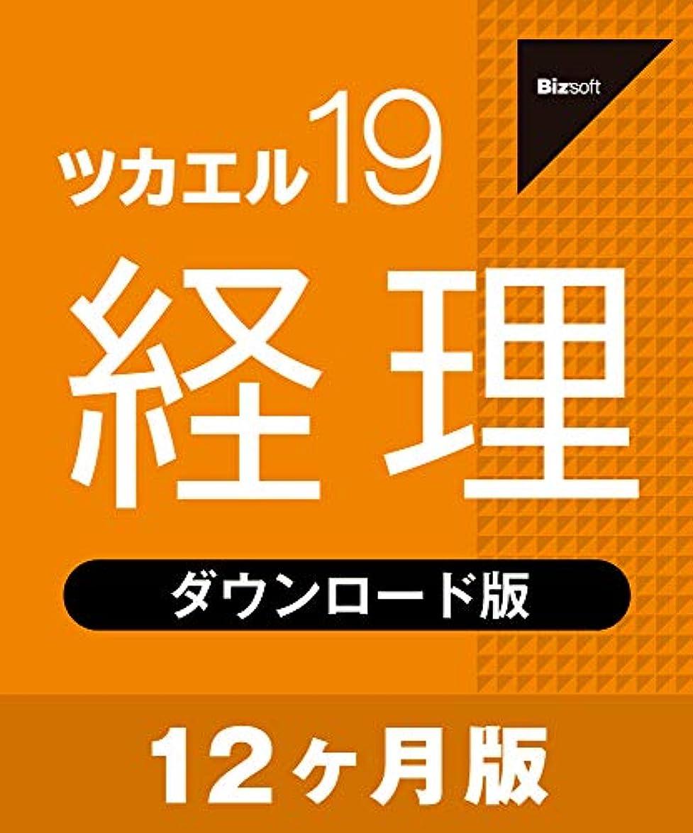 割れ目信頼性のある混合したツカエル経理 19 12ヶ月版 ダウンロード版