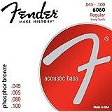 Fender フェンダー アコースティックベース弦 PHBRNZ ACOU BASS LS 8060 45-100