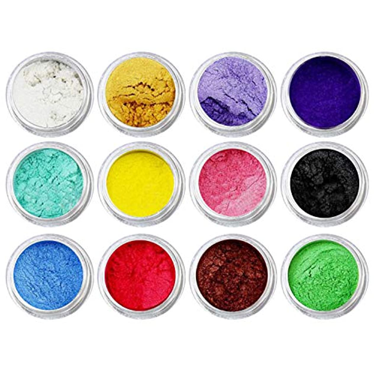荒涼とした寛解粘着性DIYネイルアートクラフトプロジェクトスライム作り用品のための12個混合色着色顔料マイカパールパウダー