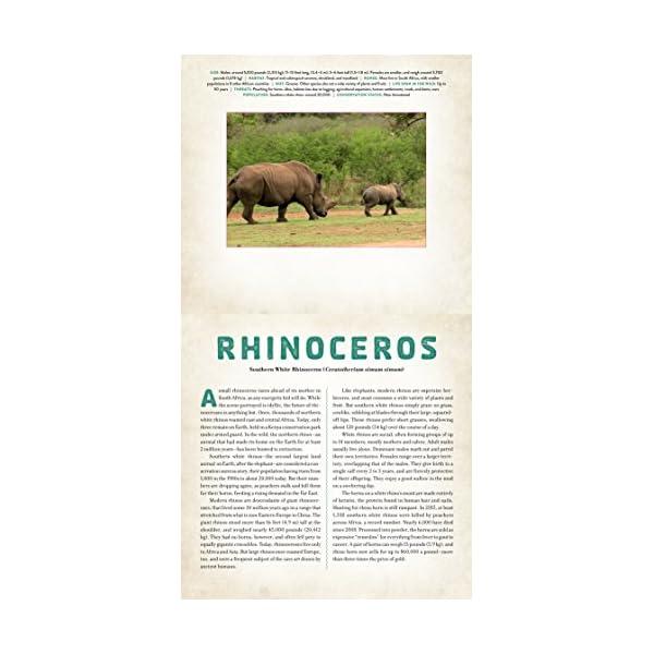 Wild: Endangered Animal...の紹介画像3