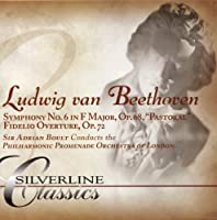 Symphony No. 6 (Boult) by Ludwig Van Beethoven (2005-07-12)