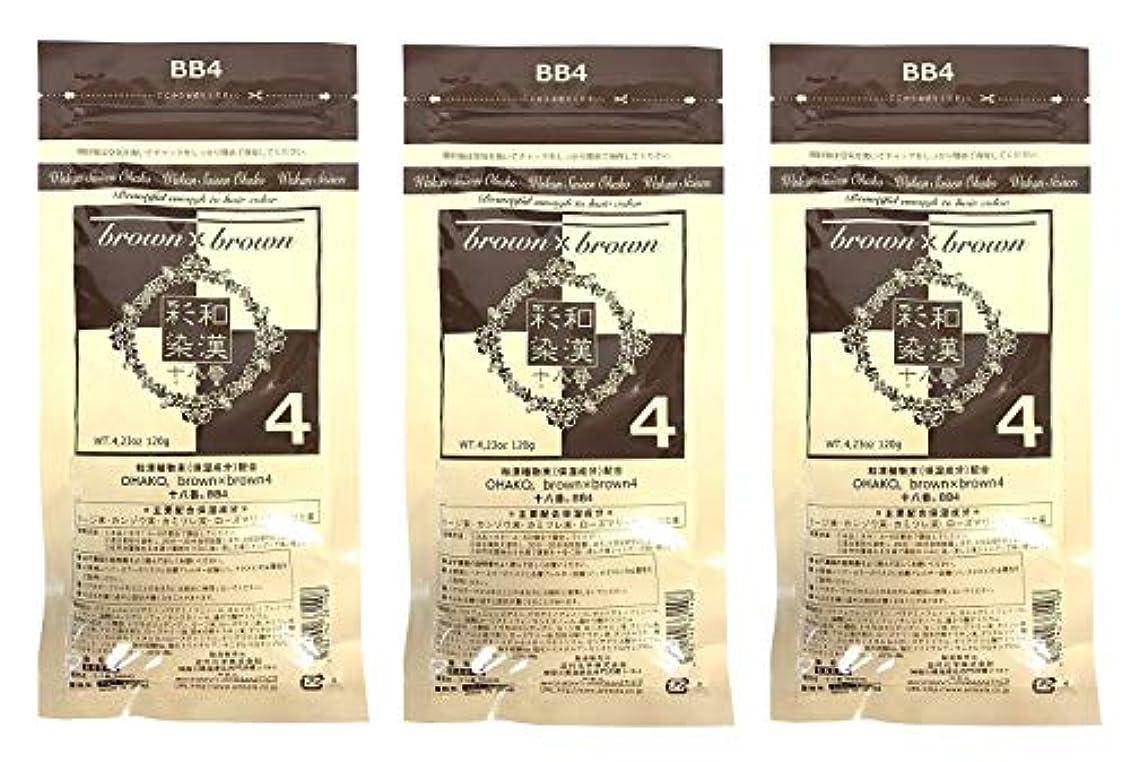 目覚める政令病的【3個セット】グランデックス 和漢彩染 十八番 120g BB4