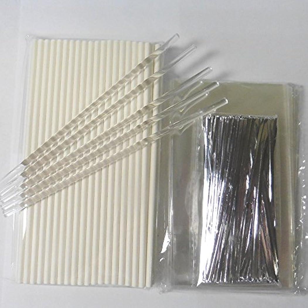 頂点発明するシャトル100pcs (15.2cm Lollipop Sticks + 7.6cm x12.7cm Bags + Twist Ties) for Cake Pops Lollipop Candy