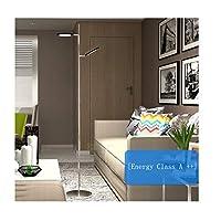 フロアランプ フロアランプ、LEDダブルヘッドクリエイティブフロアランプ、北欧リビングルームのベッドルームスタディリーディング縦型テーブルランプ (Color : Dimmable)