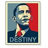 ポスター アノニマウス バラク オバマ Destiny