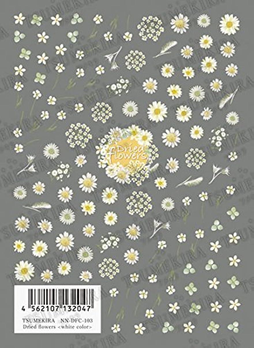 ゆるく最近密輸TSUMEKIRA(ツメキラ) ネイルシール Dried flowers (white color) NN-DFC-103